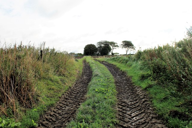 Monkshill Track