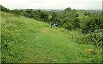 SP1566 : Heart of England Way approaching Beaudesert Castle by Derek Harper