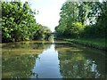 SP5865 : The Grand Union Canal, between bridges 6 and 7 by Christine Johnstone