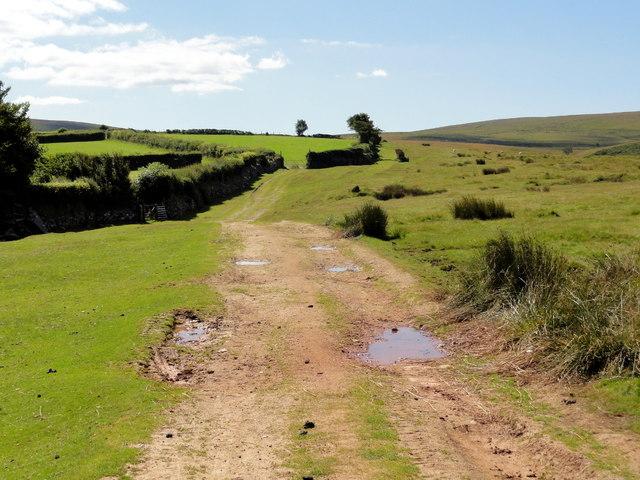 The Moorland Edge
