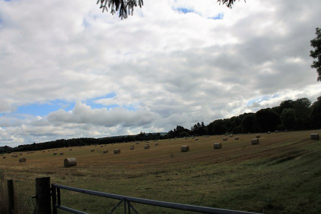 Castle Farm Bales