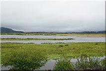 SH5738 : Glaslyn Marshes by Bill Boaden