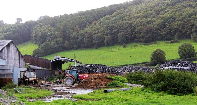 Pwllcenawon Farm from the Vale of Rheidol Railway