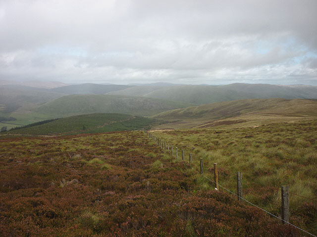 Fence on Peat Law