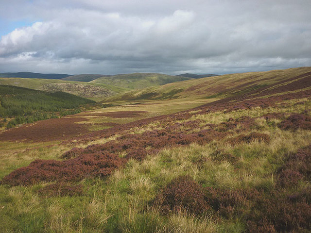 At the head of Thorny Cleuch
