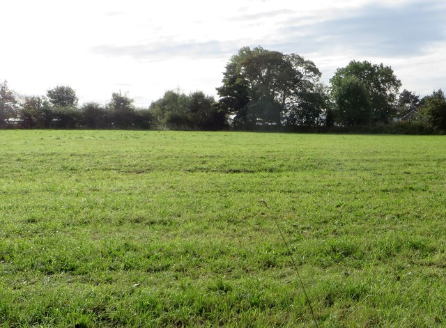 Field in Harwood