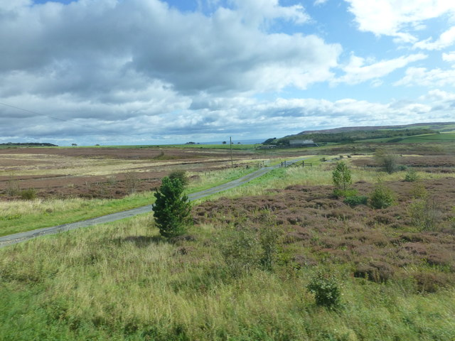 The track entrance to LeithRigg farm from the A171