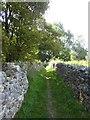 SK1460 : Path between stone walls, north of Hartshead Quarry by David Smith