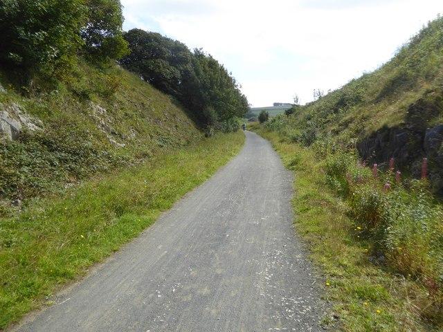 Cutting near Hartington Moor Farm