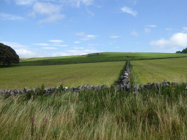 Disused pits north of Hartington Moor Farm