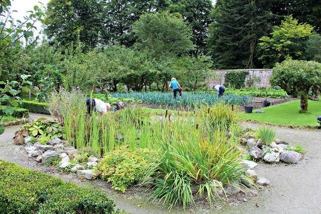 Volunteer gardeners at work