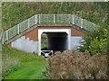 SK0934 : Underpass under The Dove Way by Ian Calderwood