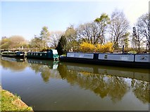 SJ7993 : Narrowboats on the Bridgewater Canal by Gerald England