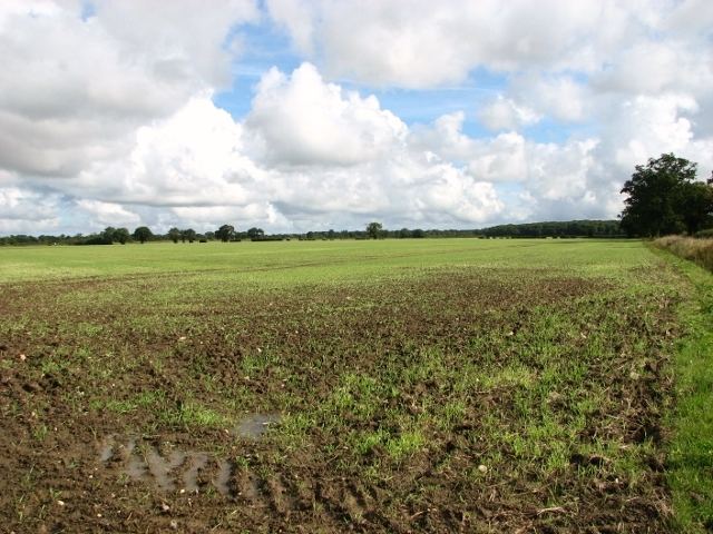 Crop fields by Browick Bottom Farm