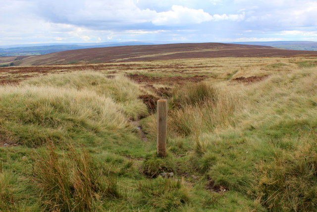 Footpath heading South over Moorland from Limers Gate