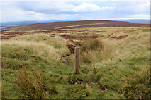 SE0130 : Footpath heading South over Moorland from Limers Gate by Chris Heaton
