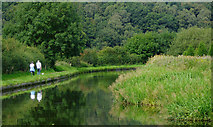 SO8690 : Canal south of Swindon in Staffordshire by Roger  Kidd