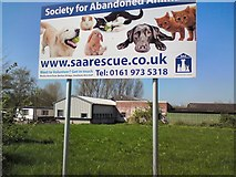 SJ7993 : Society for Abandoned Animals by Gerald England
