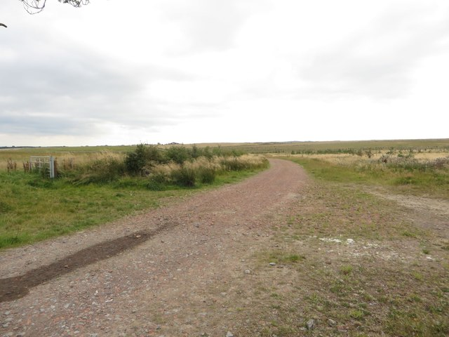 Farm track near East Stobswood