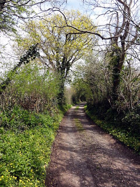 Track from Rydonball Cross to Oldbarn Cross