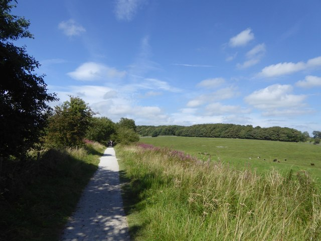 Tissington Trail and woodland at Endmoor