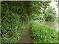 SP1966 : Stratford-upon-Avon Canal towpath by Derek Harper