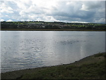 SY2591 : View across the River Axe at Axmouth by Jonathan Thacker