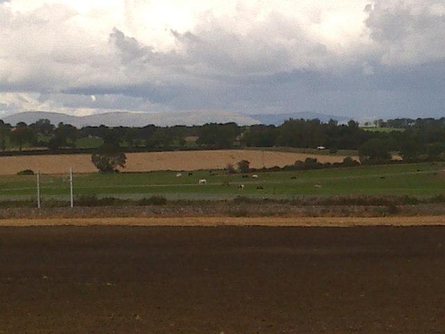 Farmland across railway