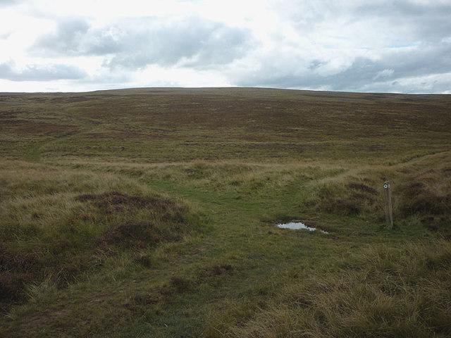'X' marks the spot on Gaythorne Plain