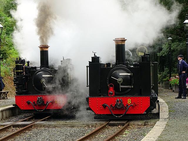 Smoke and steam at Aberffrwd