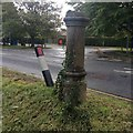 TL3243 : Stump of a concrete lamppost by Dave Thompson