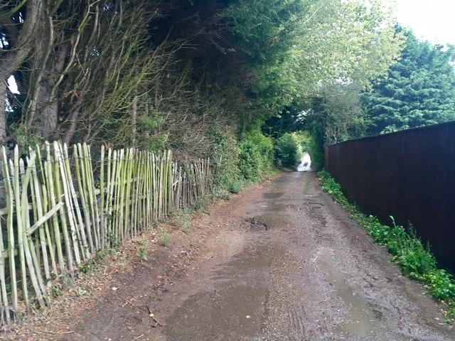 Court Lane, near Detling