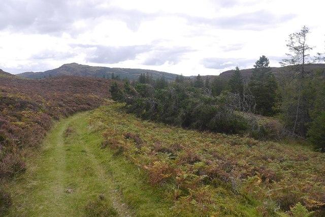 Track north of Loch Ordie