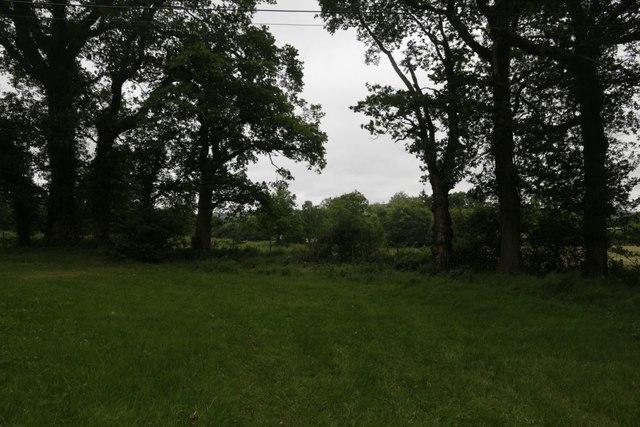Corner of the Churchyard