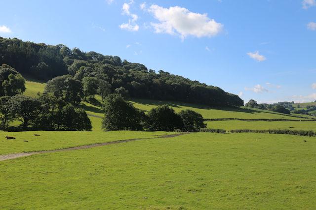Track across field from Lower Sylfaen Farm