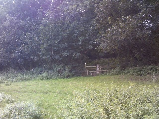Stile to the Wood