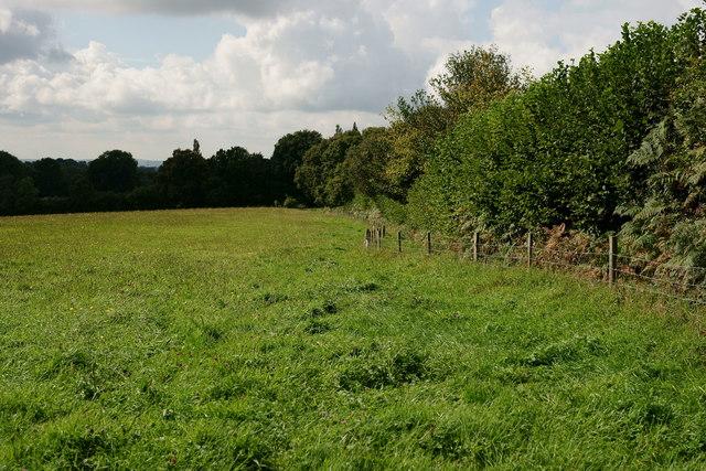 Footpath on Shepherd's Hill