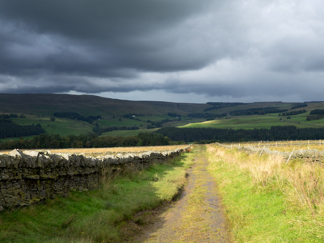 Hill road on north side of Park Fell