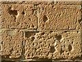 SP2872 : Stonework, Kenilworth Priory by Philip Halling