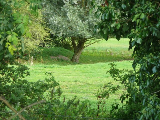 Part Of A Moated Site Shillington C Humphrey Bolton Cc By Sa 20