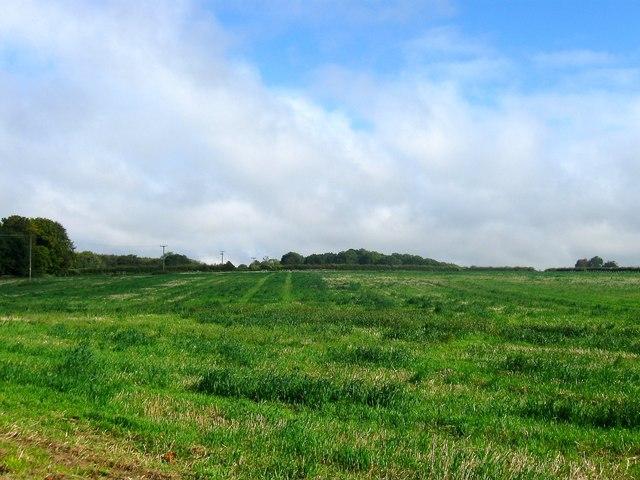 Dover Field (2)