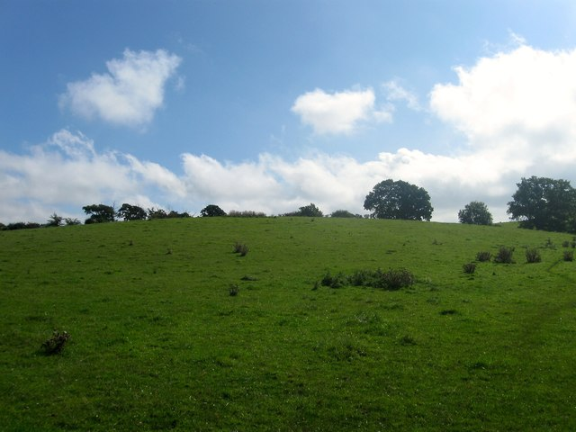 Browey Five Acres
