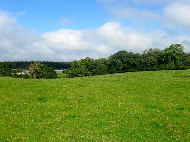Milbury Four Acre Field