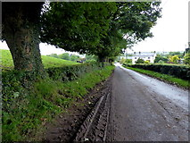 H6056 : Muddy road at Ballynasaggart by Kenneth  Allen