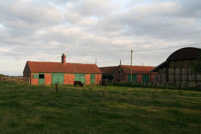 Tiny cattle and smart barn in Horsington