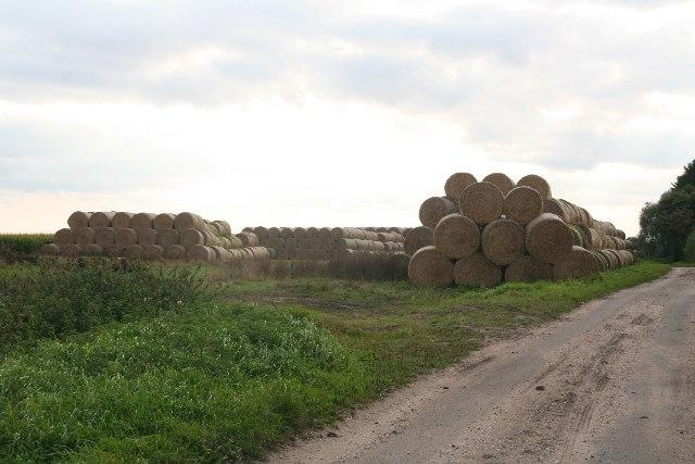 Straw roll landscape off Holmes Road, Horsingtom Holmes