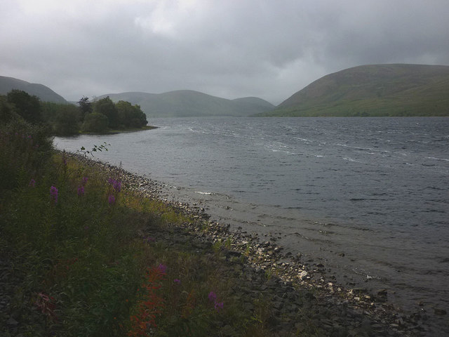 Shore of St Mary's Loch