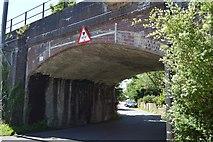 TL5234 : Newport Viaduct by N Chadwick
