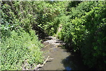 TL5234 : River Cam by N Chadwick