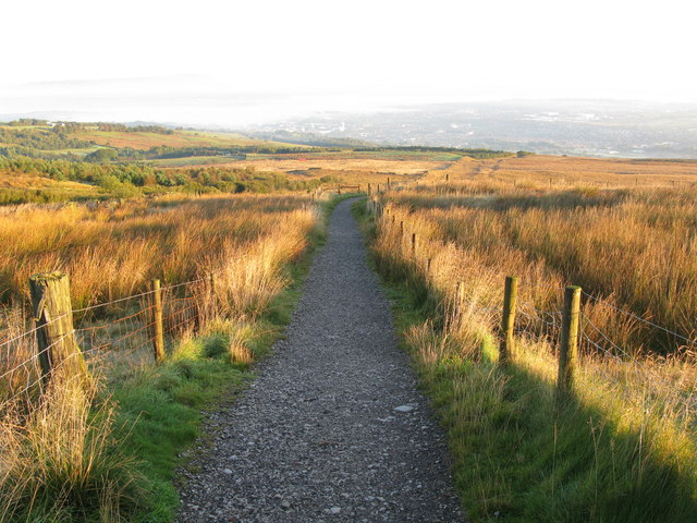 Near the start of the path to the Singing Ringing Tree